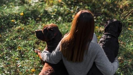 El misterio de la relación entre perros y humanos.