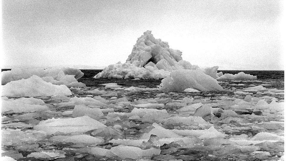 Adriana Lestido: la teoría del iceberg