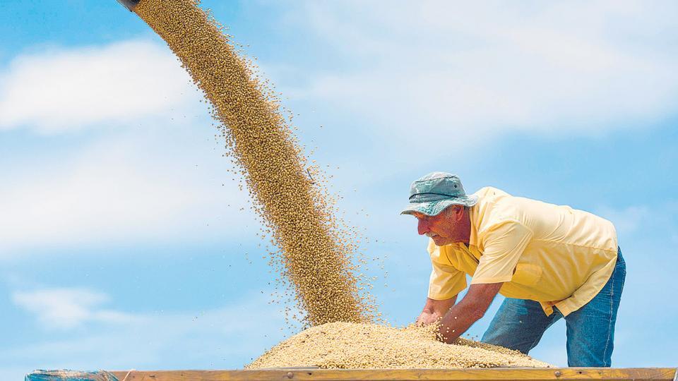 Los productores ya no tendrán la obligación de traer los dólares que genera el suelo argentino.