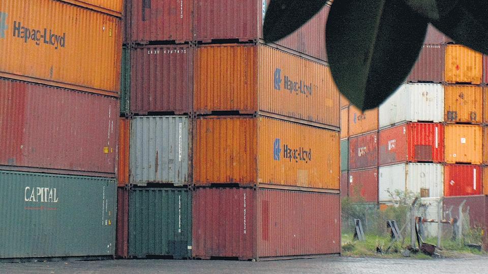 La importación de bienes de consumo aumentó 38 por ciento.