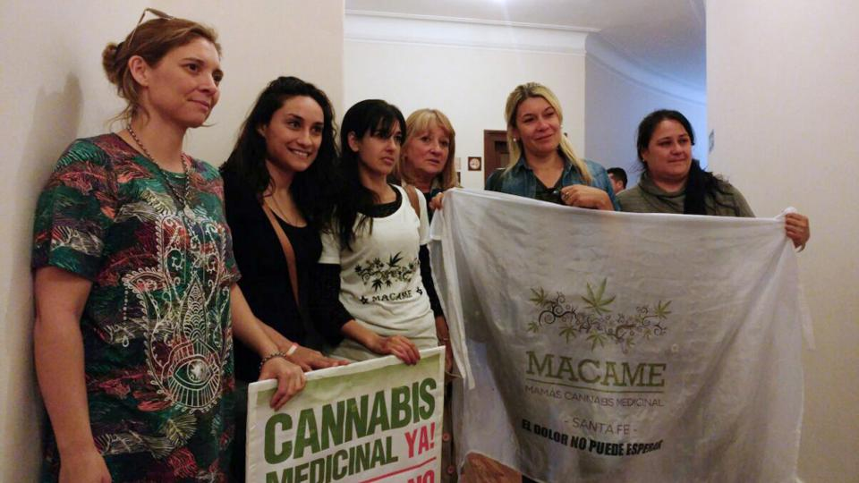 Familiares de pacientes impulsaron la ley de cannabis y ahora celebran el avance del LIF.