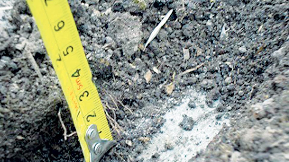 Algún centímetro de tierra por encima de un contrapiso duro.