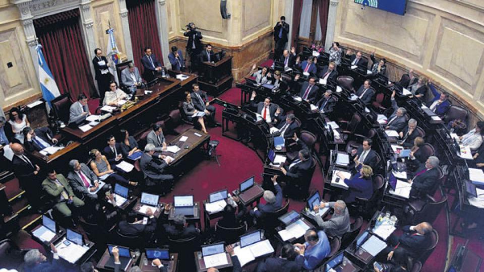 Al comienzo de la sesión, las senadoras del FpV-PJ plantearon una cuestión de privilegio contra el fallo de la jueza Servini de Cubría.
