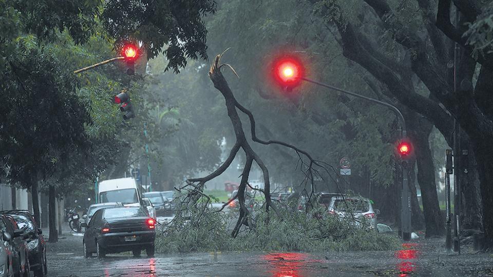 Imágenes increíbles tras el paso del temporal en una de las calles porteñas.