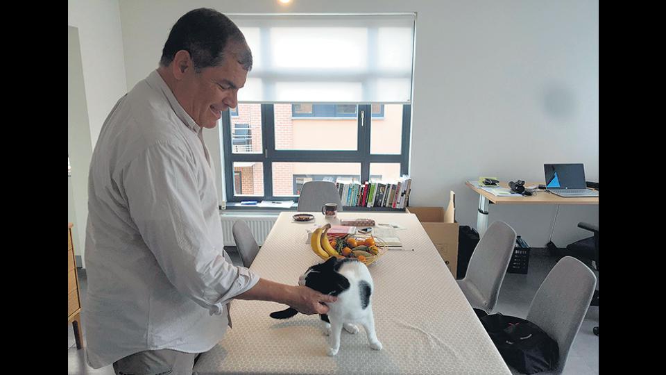 Mientras siga vigente la prisión preventiva, Correa no volverá a Ecuador; en la imagen con su gato Dobi.