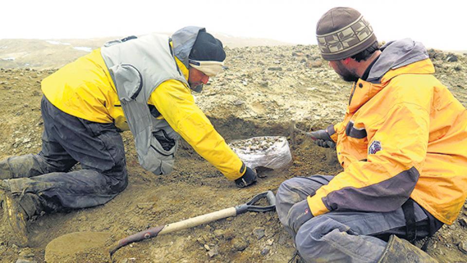 Los primeros restos se encontraron en 1989 y se terminó de rescatar en 2017.