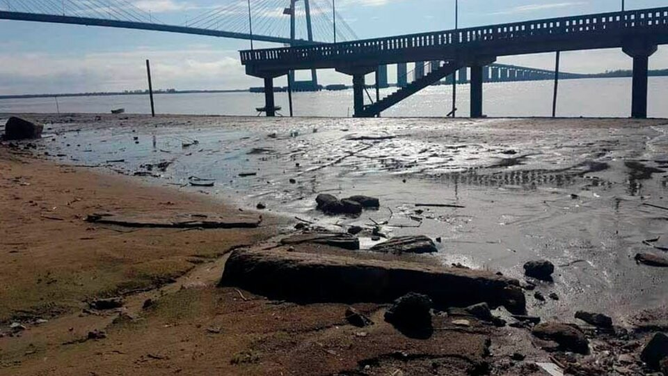 Fuerte bajante del río Paraná en Entre Ríos   Serios problemas para la reproducción de los peces y la circulación de embarcaciones   Página12