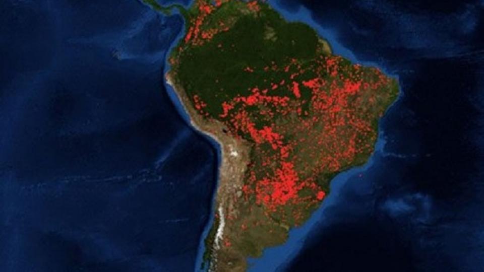 Una imagen que da cuenta de la magnitud del desastre ecológico