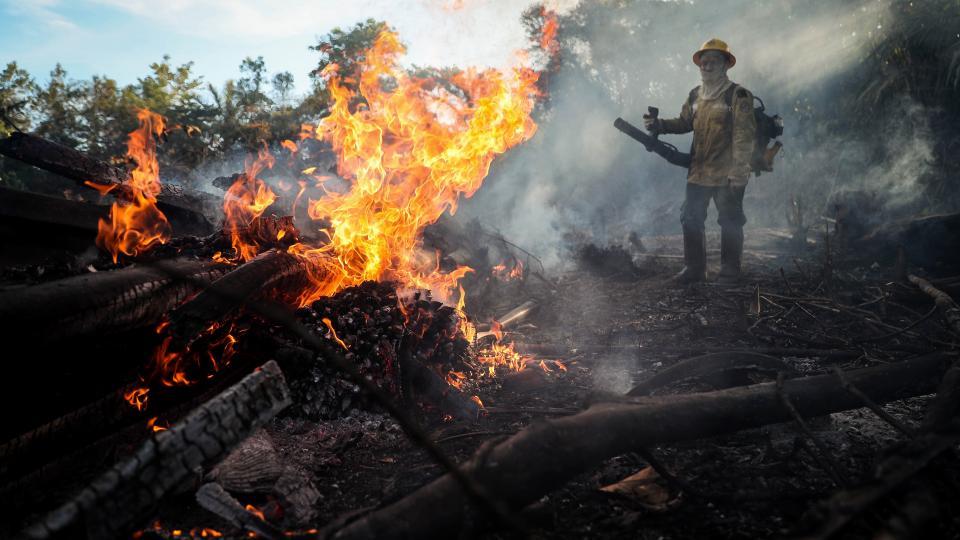 Fuerte crecimiento de la deforestación en la Amazonia En Brasil se disparó en los últimos cuatro meses, alentado por un aumento significativo de las quemas
