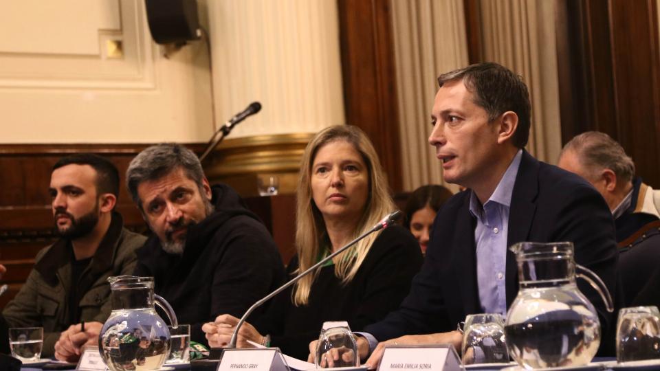 Grosso, Santa María, Alvarez Rodríguez y Gray, entre otros, participaron de una conferencia de prensa en el Congreso.