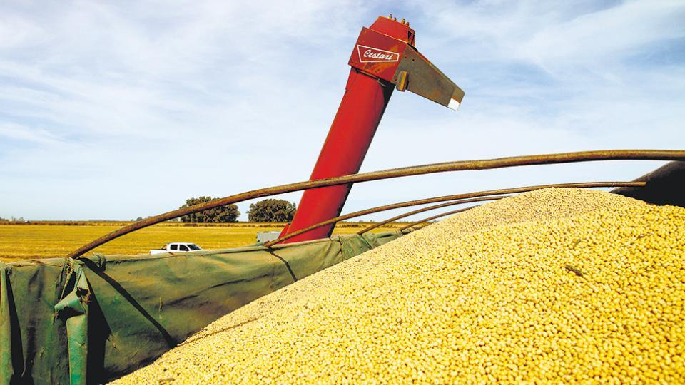 El clima entre la dirigencia agropecuaria está tenso y surgen amenazas de medidas de fuerza.