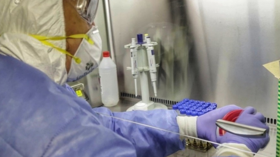 Coronavirus en la Argentina: 774 casos y 16 muertes...  | Página12