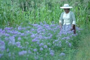 Duraznales, de Ingrid Dominguez Rico (Bolivia), transcurre en Villa Verde, donde sólo quedan mujeres.
