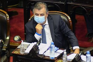 Mario Negri, titular de la bancada radical en Diputados. (Fuente: NA)