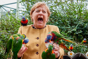 Merkel, al momento de sufrir el picotazo del loro. (Fuente: DPA)