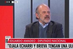 """""""Perdimos pero ganamos"""", dijo también Amadeo, en sintonía con otros oficialistas."""