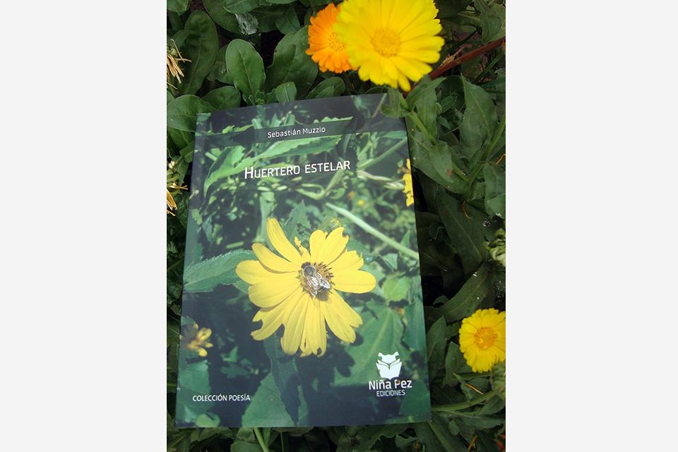 El libro de Muzzio.