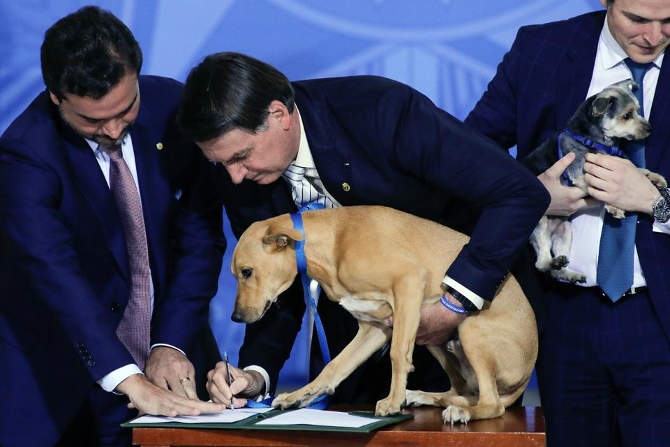 """Jair Bolsonaro promulgó una ley contra el maltrato animal e hizo """"firmar"""" a un perro"""