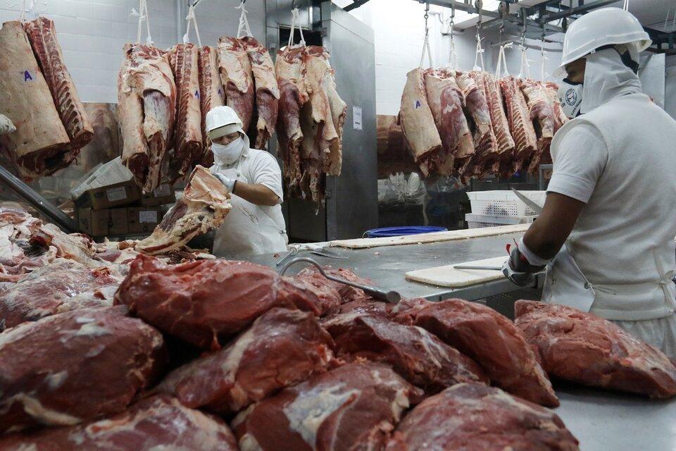 Los frigoríficos denunciados declararon exportaciones de hueso y carne no apta para consumo humano. (Fuente: Leandro Teysseire)