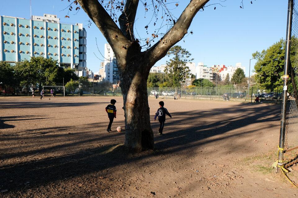 En el potrero del Parque hay botines, camisetas, pelotas y un árbol que los futbolistas respetuosamente esquivan. (Fuente: Cecilia Salas)