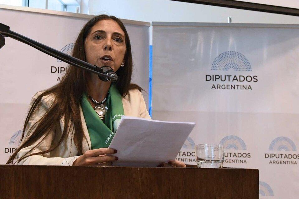 Soledad Deza en su intervención en el Congreso durante el debate por la ley de ILE. (Fuente: Prensa HDCN)