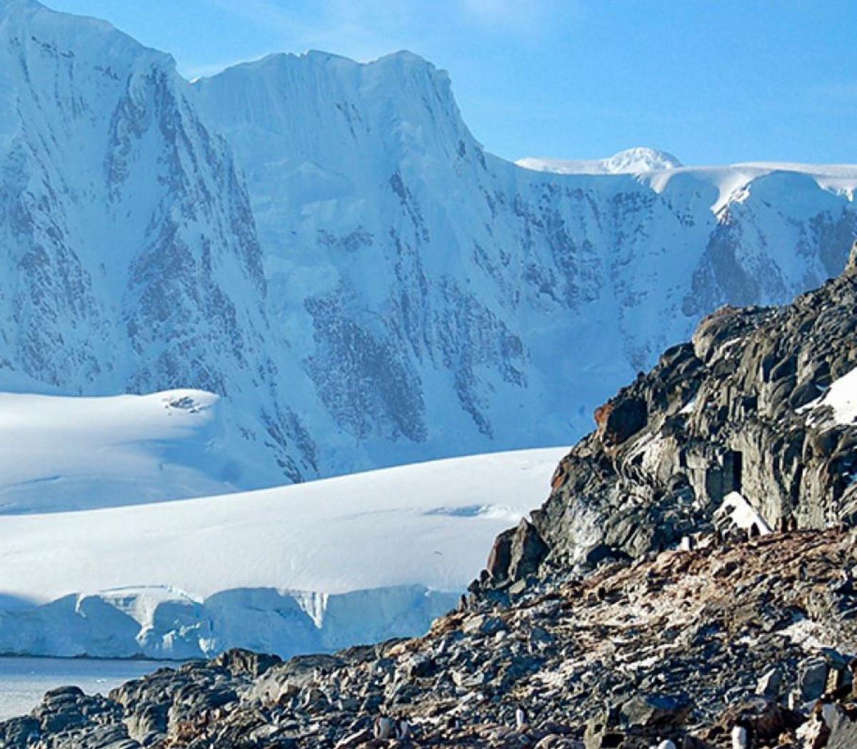 El coronavirus llegó a la Antártida: 36 contagios e... | Página12