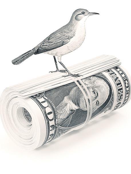 INFORME ESPECIAL. Programa económico alternativo