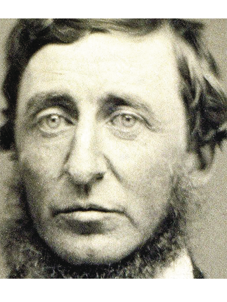 DAVID THOREAU REVISITADO EN EL SIGLO XXI
